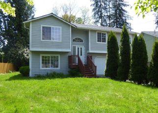 Granite Falls Cheap Foreclosure Homes Zipcode: 98252