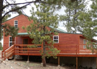 Westcliffe Cheap Foreclosure Homes Zipcode: 81252