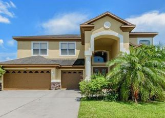 Wesley Chapel Cheap Foreclosure Homes Zipcode: 33543
