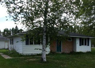 Baudette Cheap Foreclosure Homes Zipcode: 56623