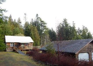 Brinnon Cheap Foreclosure Homes Zipcode: 98320