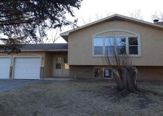 Fountain Cheap Foreclosure Homes Zipcode: 80817