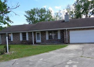 Orange Park Cheap Foreclosure Homes Zipcode: 32065